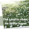 The Lord is risen, He is our hope!